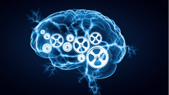 Brain with gears blog title