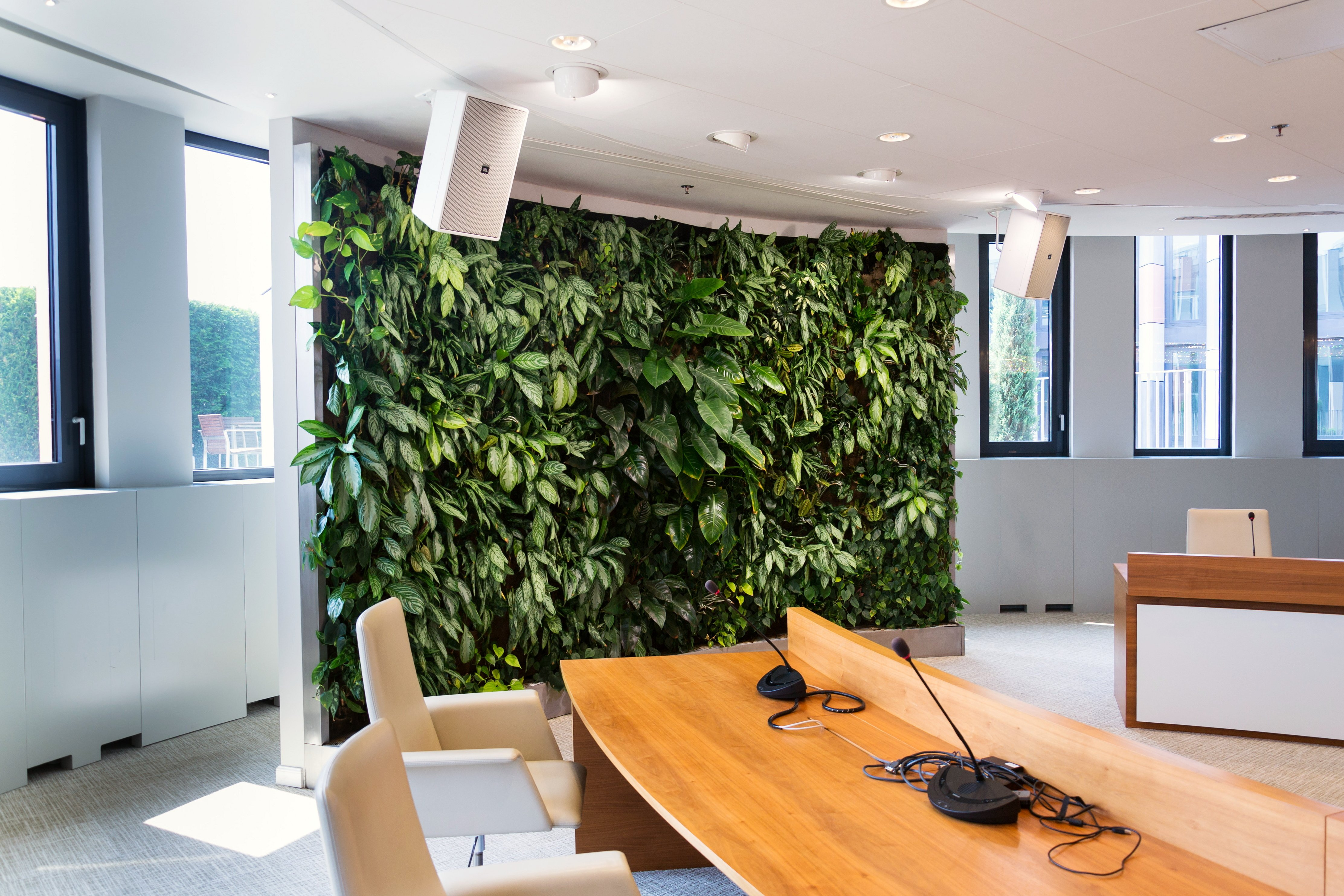 Can Plantscaping Cure the Ills of the Open Office?